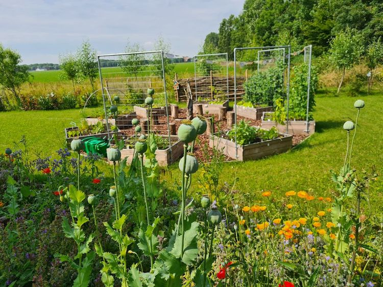 Rituals to Root tuin 1
